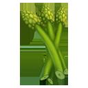 Bath Asparagus