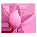 Pink Sowbread