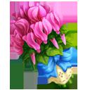 Pink Sowbread Bouquet