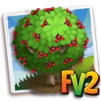 Red Witch Hazel Tree